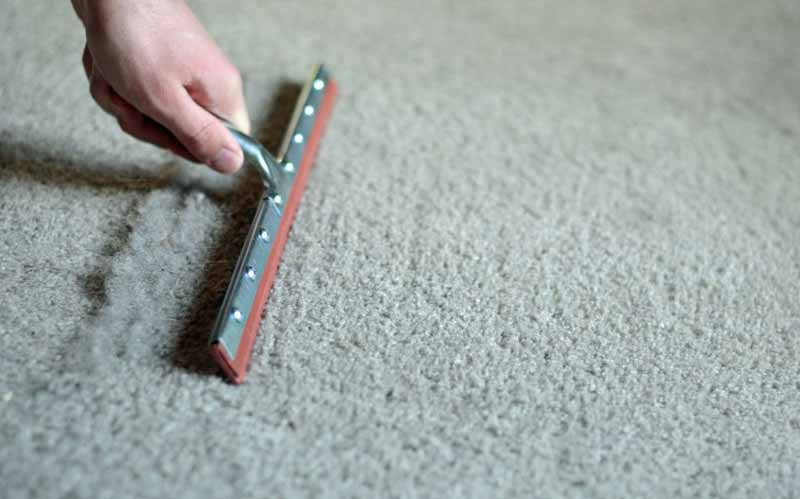dusty-carpet-cleaning