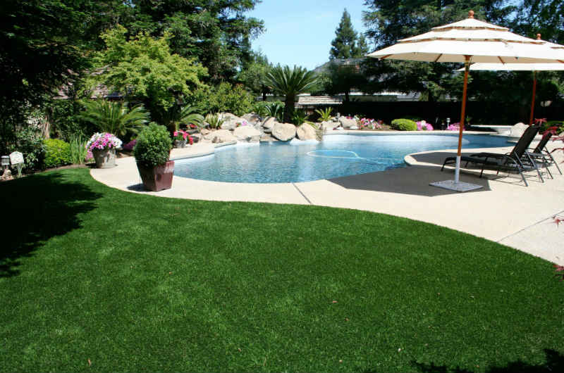 Designing your Swimming Pool