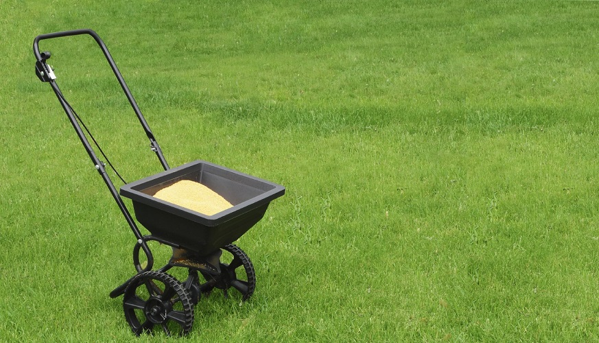 Nitrogen for Lawn Care – Do I Need it